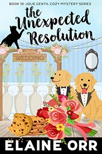 The Unexpected Resolution by Elaine Orr