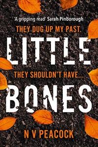 Little Bones by N. V. Peacock