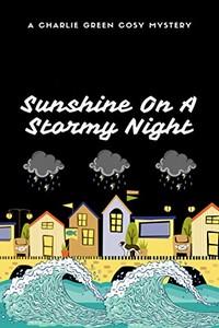 Sunshine on a Stormy Night by Samantha Jeffree