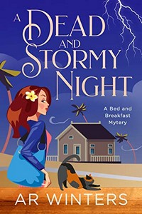 A Dead and Stormy Night by A. R. Winters