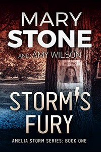 Storm's Fury by Mary Stone